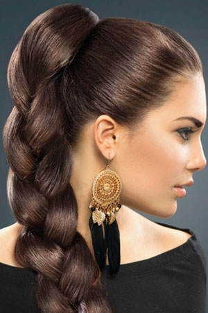 plaited prom hairstyle