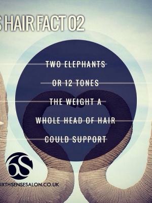 6s-hair-fact